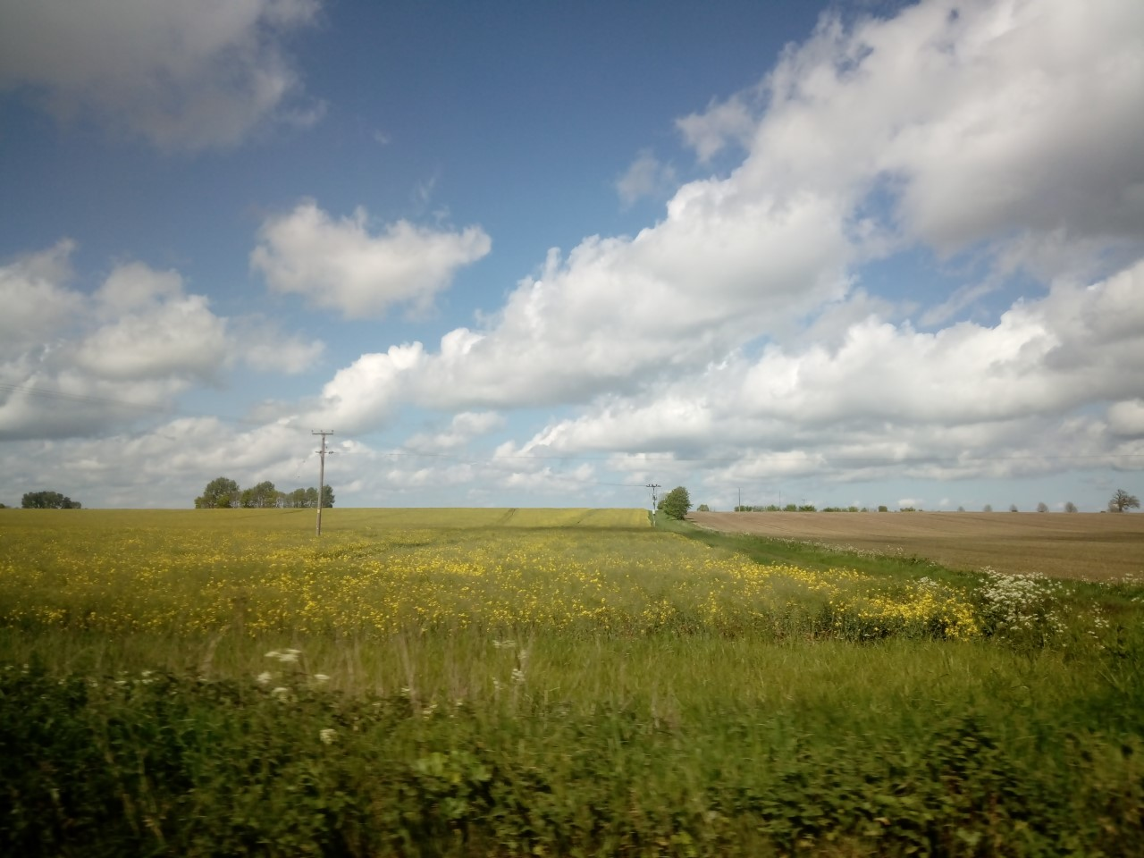 clouds over fens