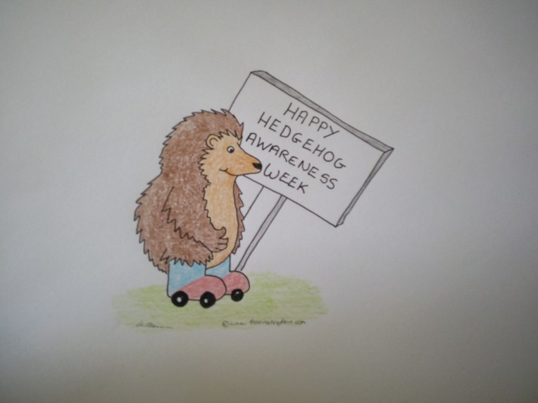 happy hedgehog awareness wizzy