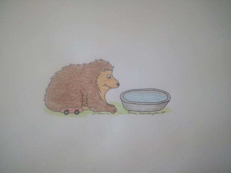 hedgehog water wizzy