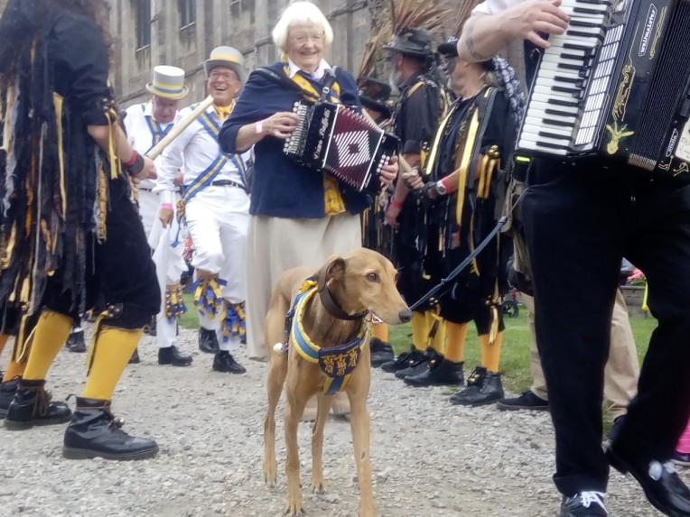 dog of parade.jpg